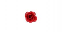 Růže mini - červená
