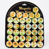 Magnet - motiv slunečnice