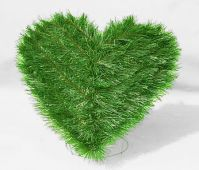 Srdce stojící