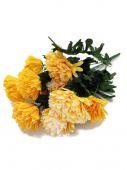 Chryzantéma x12 - žlutá