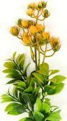 Větvička bodlák - oranžová