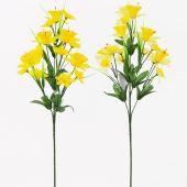 Narcis větvička - MIX