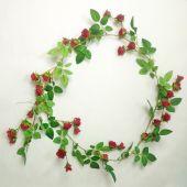 Růže girlanda - červená