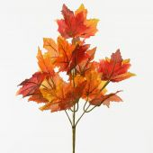 Podzimní trs x5