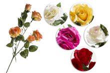 Růže x5 - MIX