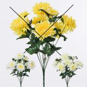 Chryzantéma x10 - MIX
