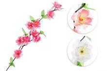 Jabloň květ - MIX