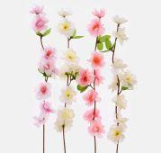 Jabloň květ sólo - MIX