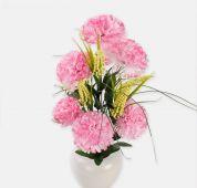 Karafiát x6 - růžová